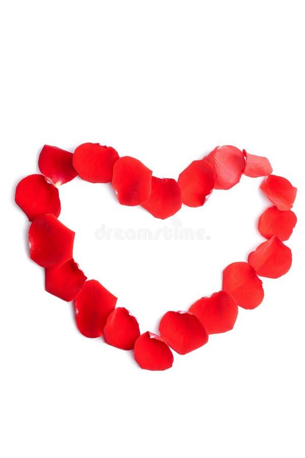 Coeur des pétales roses rouges d'isolement photographie stock libre de droits