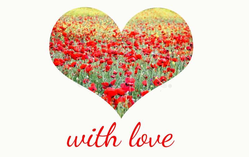 Coeur du champ des pavots rouges et les fleurs et le lettrage jaunes avec amour image libre de droits