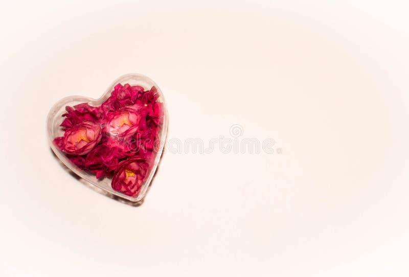 Coeur en verre avec les fleurs rouges à l'intérieur sur un pâle - fond rose images libres de droits