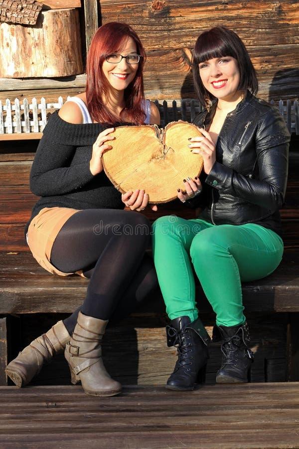 Coeur fait de bois photos libres de droits