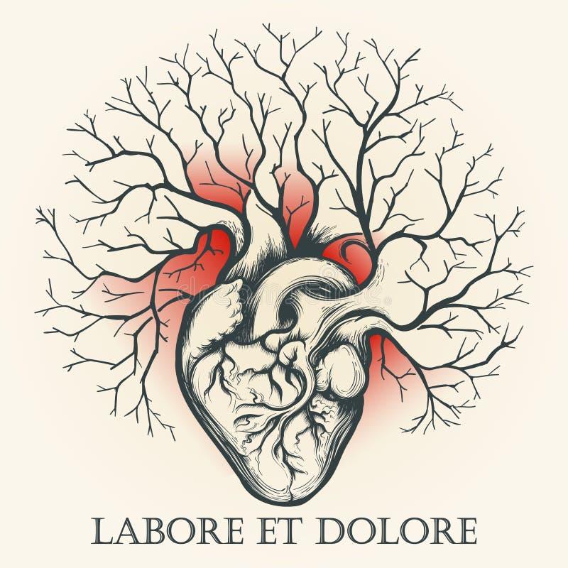 Coeur humain avec l'emblème de branches illustration libre de droits