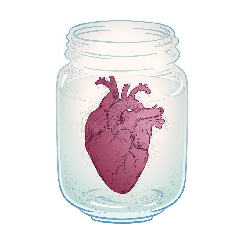 Coeur humain dans le pot en verre d'isolement Illustration tirée par la main de vecteur de tatouage d'autocollant, d'impression o illustration de vecteur