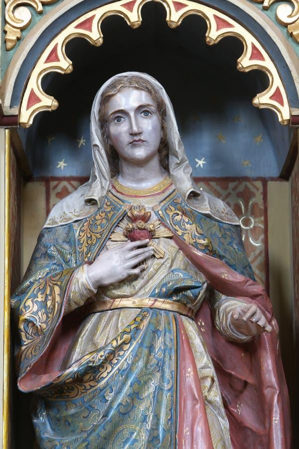 Coeur immaculé de Mary images stock