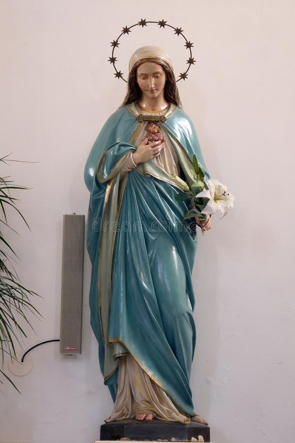 Coeur immaculé de Mary image libre de droits