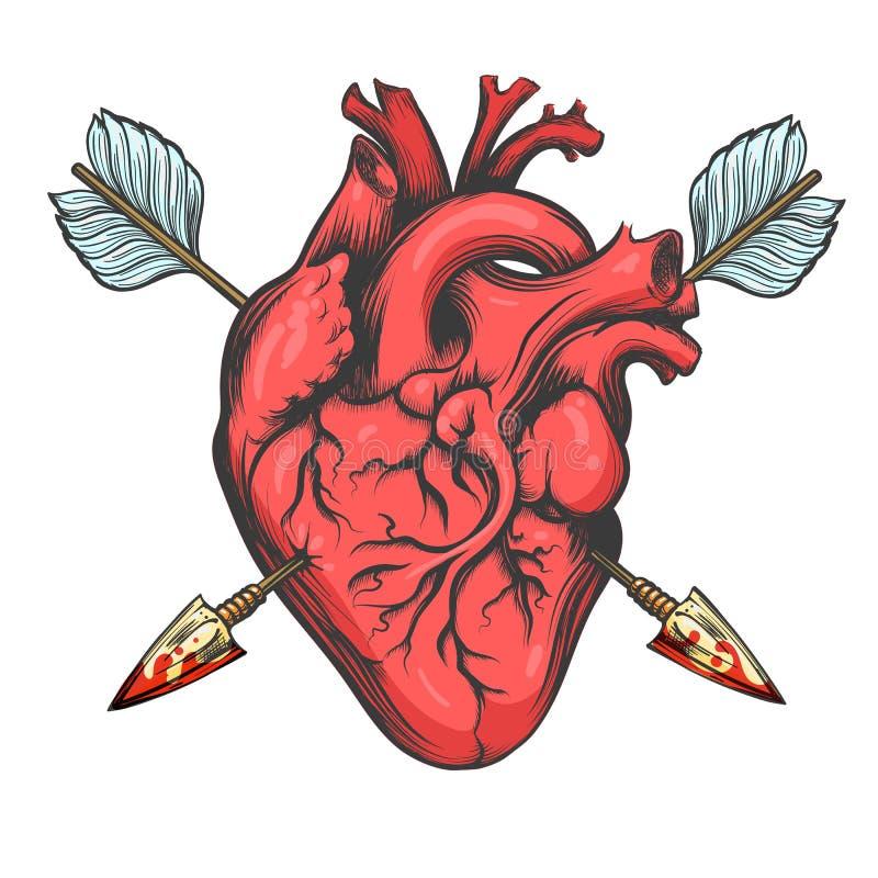 Coeur percé par deux flèches illustration de vecteur