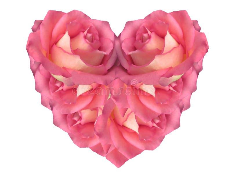 Coeur rose fait de roses image libre de droits