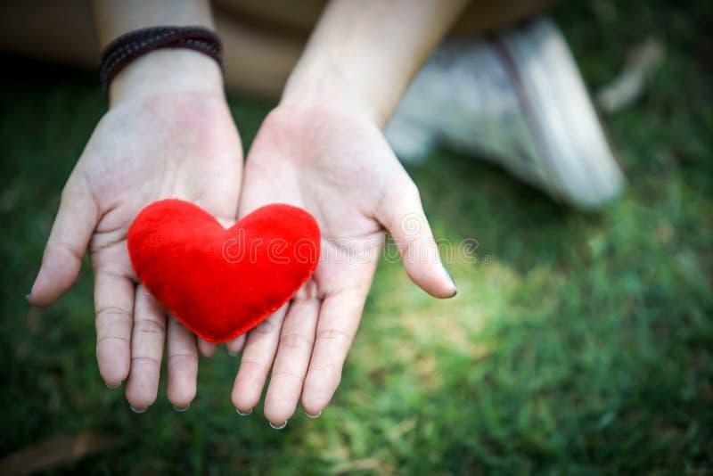 Coeur rouge photo libre de droits