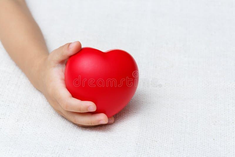 Coeur rouge dans des mains de paume de bébé image libre de droits