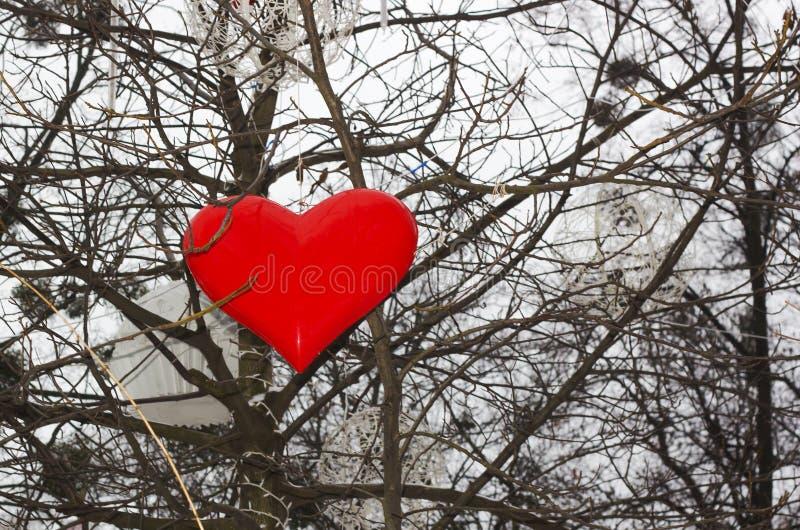 Coeur rouge de décoration de Noël et toute autre décoration sur l'arbre photo stock