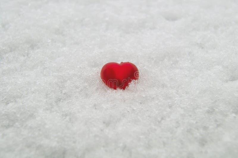 Coeur rouge sur un fond de neige blanche pure images libres de droits