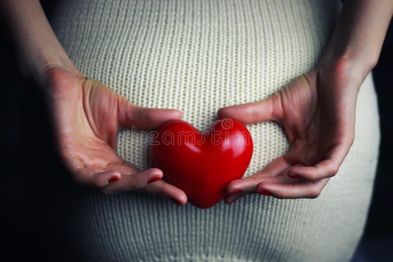 Coeur se tenant femelle de main images libres de droits