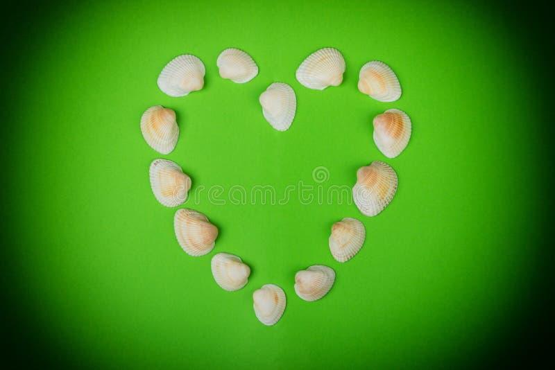 Coeur symbolique fait à partir des coquillages se trouvant sur le fond vert photos libres de droits