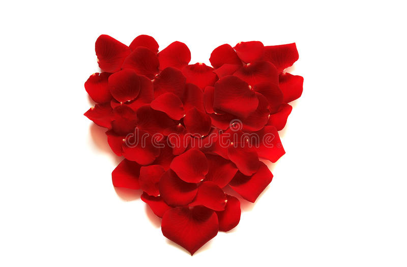 Coeur/Valentine de Rose images libres de droits