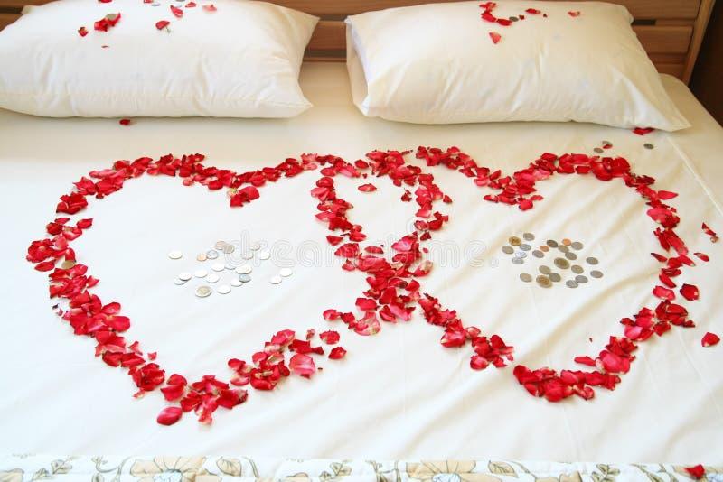 Coeurs roses de rouge sur le bâti blanc. images stock