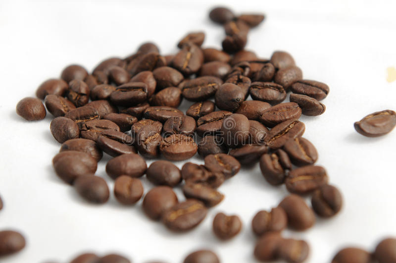 Cofee Bohnen stockbild