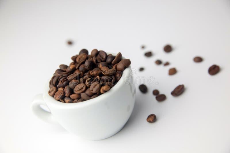 Cofee cru imagem de stock royalty free