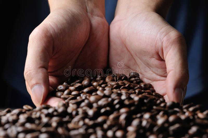 Download Cofee grains stock photo. Image of hold, energy, java - 25615132