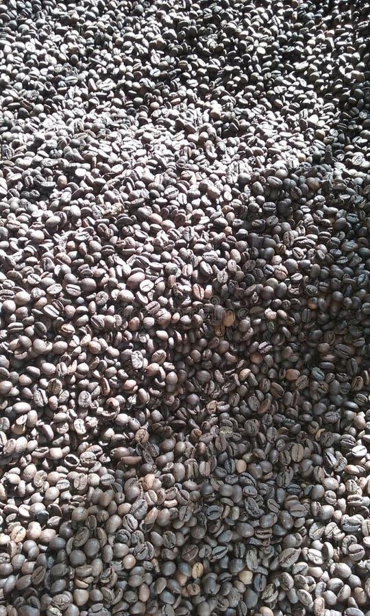 黑coffe豆 免版税图库摄影