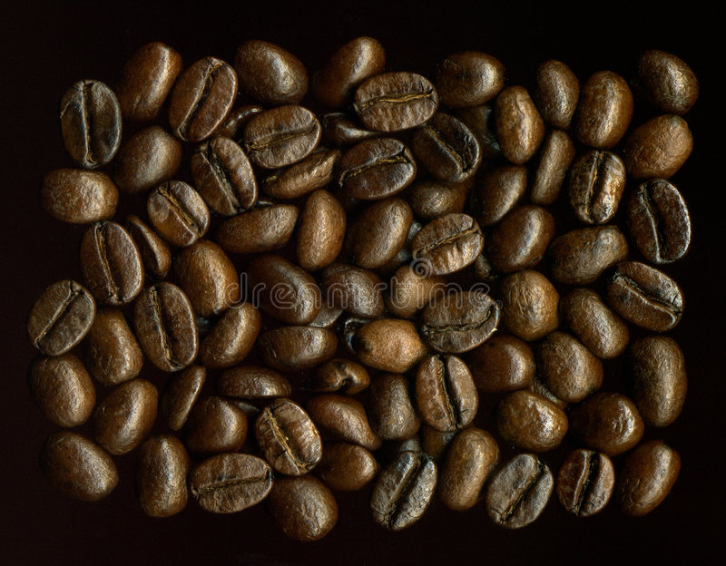 coffe σιτάρια στοκ εικόνες