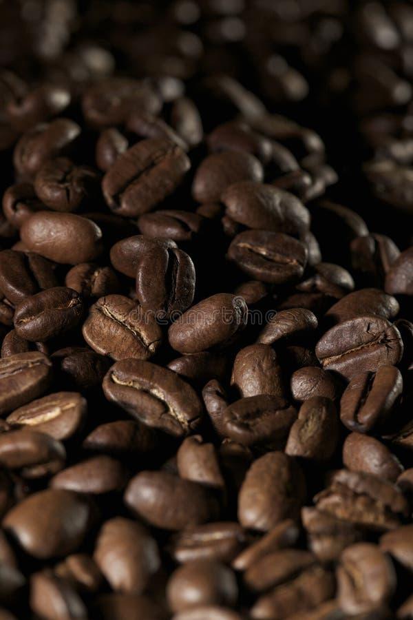 coffe фасолей стоковое изображение rf