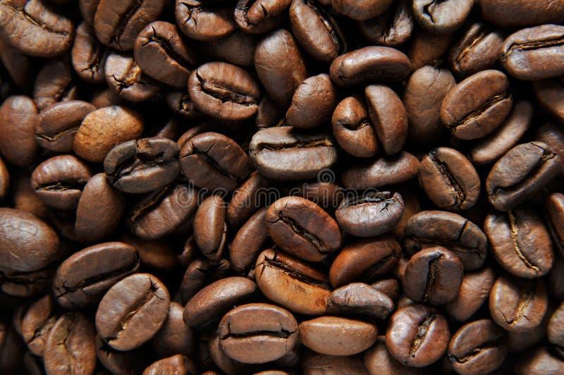 coffe zdjęcia stock