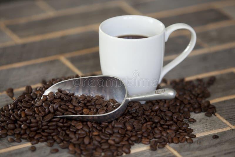 Coffe bönor arkivbild