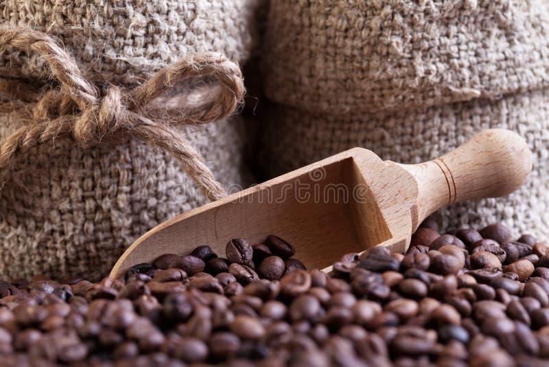 Coffe bönor kammar hem och hänger lös specificerar arkivbilder