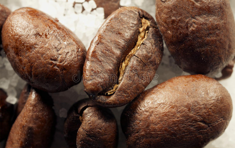 Download Coffe beans stock image. Image of gourmet, texture, color - 26769349