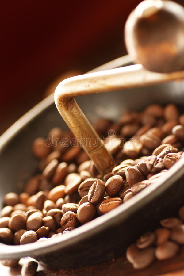 Coffe beans in the grinder stock photos
