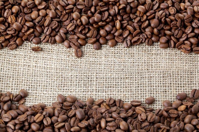 Coffe Bohnenhintergrund stockfotos