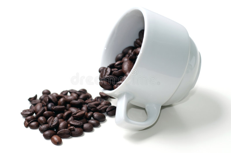 Coffe cup and beans. Coffee beans in cup and on the white foreground royalty free stock images