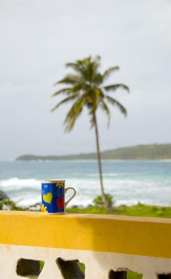 coffe Cup karibisches Meer Nicaragua stockbilder