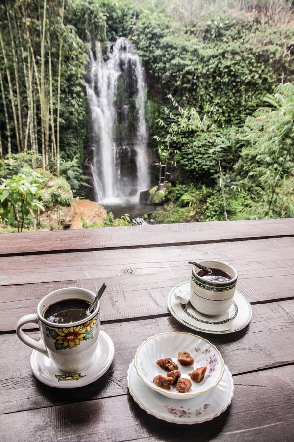 Coffe de la civeta con la cascada - Bali, Indonesia fotografía de archivo