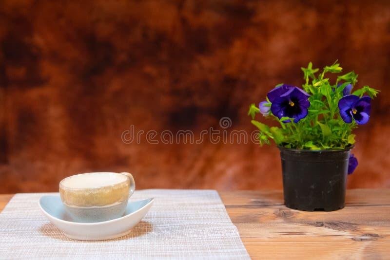 Coffe mjölkar tabble brun coffetime för grönt gräs för växten lycklig royaltyfria bilder