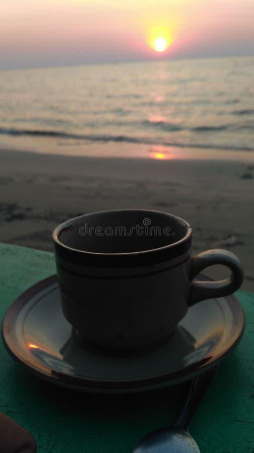 Coffea diário fotos de stock