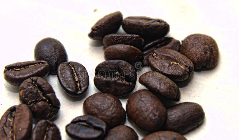 Coffeabeans in close-up stock afbeeldingen