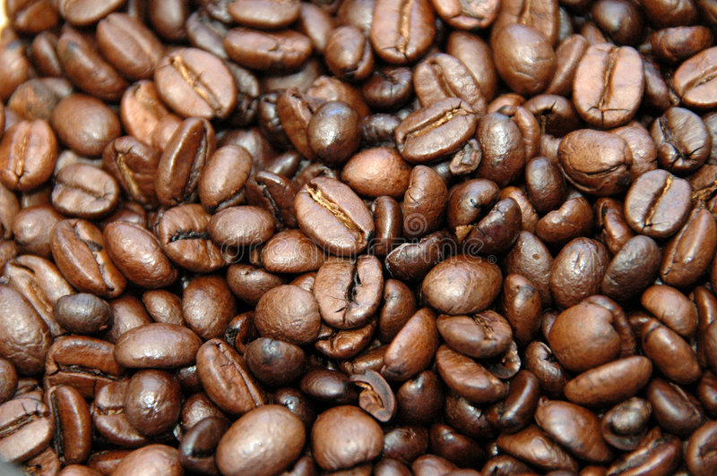 Coffebeans photo libre de droits
