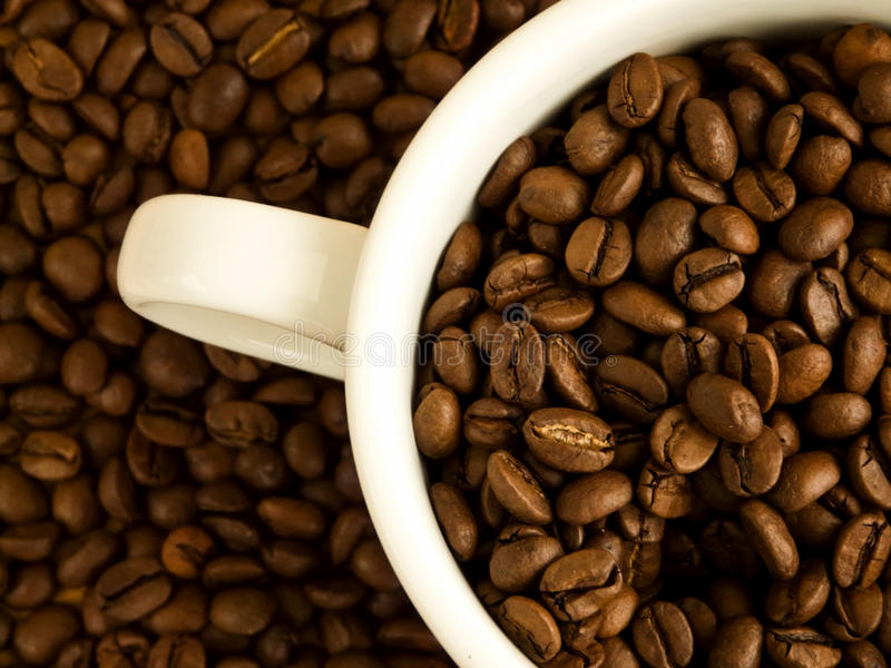 Coffee. White cup full of coffee beans. Viewed from above stock photo