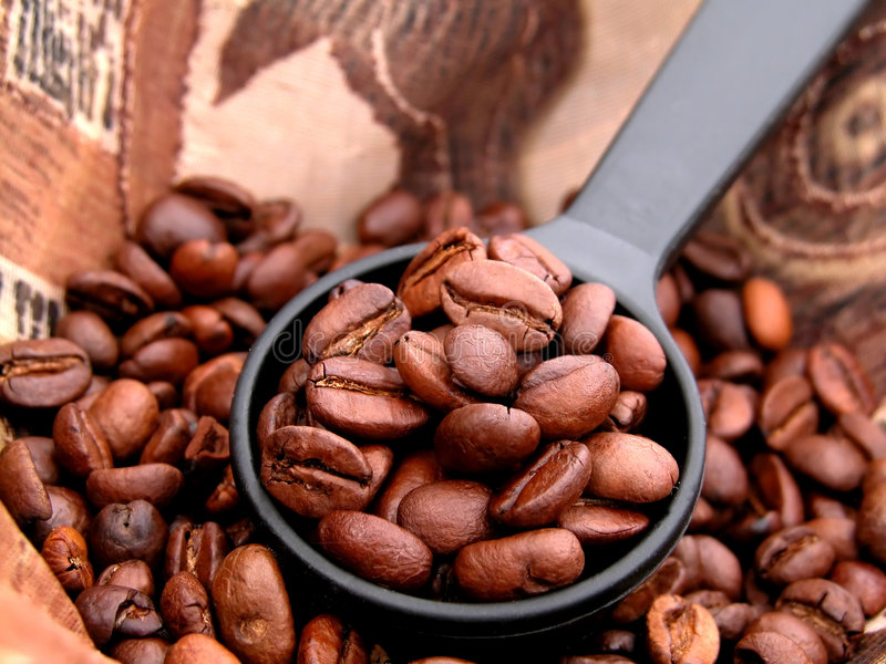 Download Coffee stock photo. Image of coffee, roasted, mill, flay - 166706
