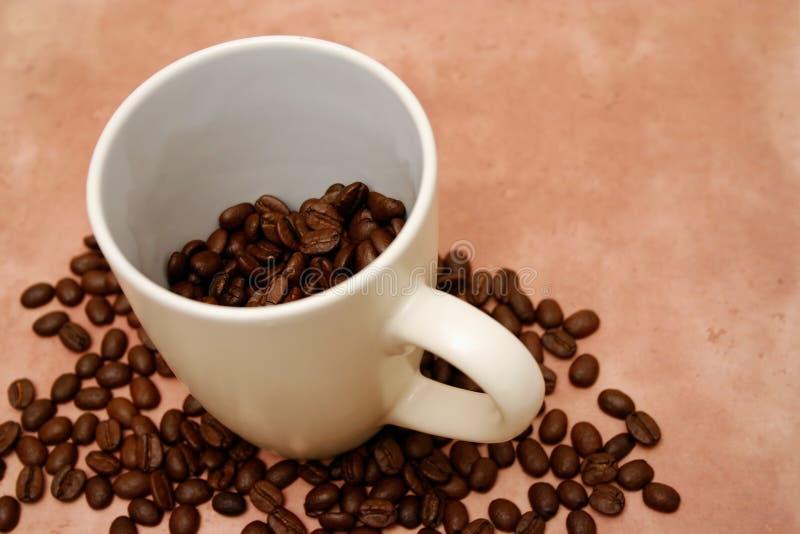 Coffee Free Stock Image