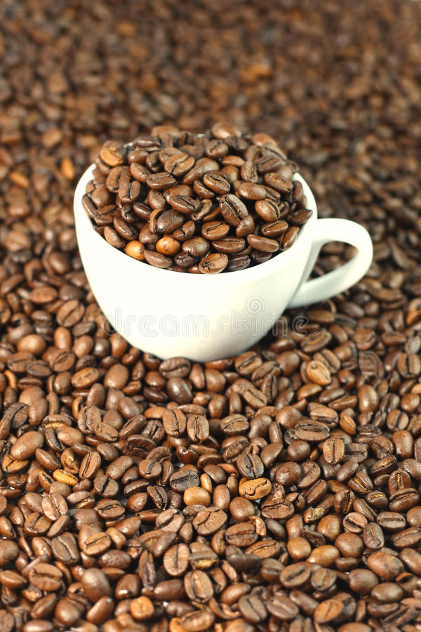 Free Coffee Stock Images - 18628404
