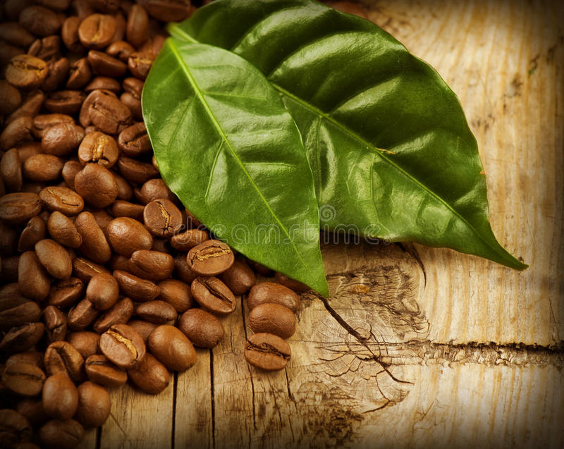 Coffee. Beans over Wooden Background royalty free stock image