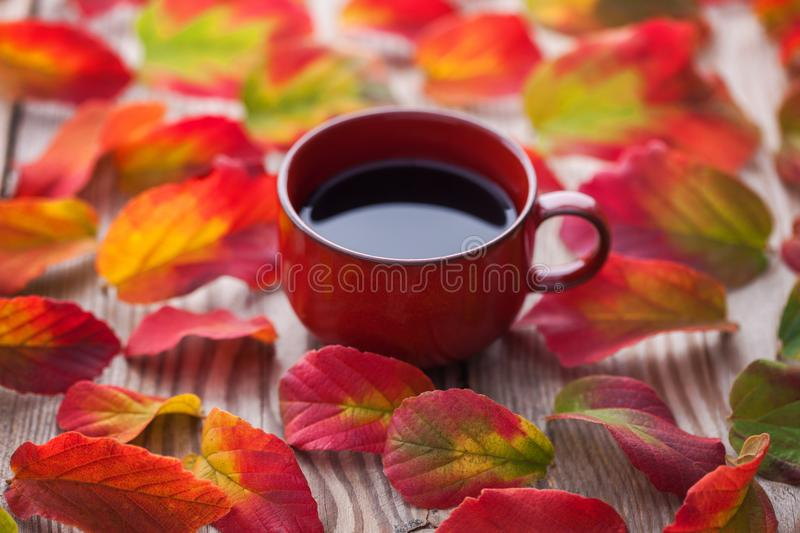 Coffee with autumn leaves royalty free stock image