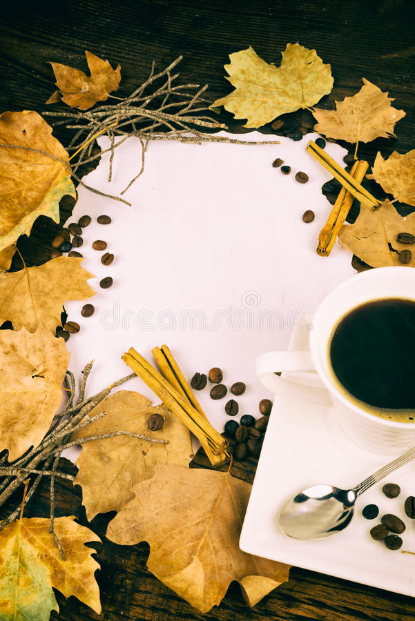 Coffee and autumn leaves royalty free stock images