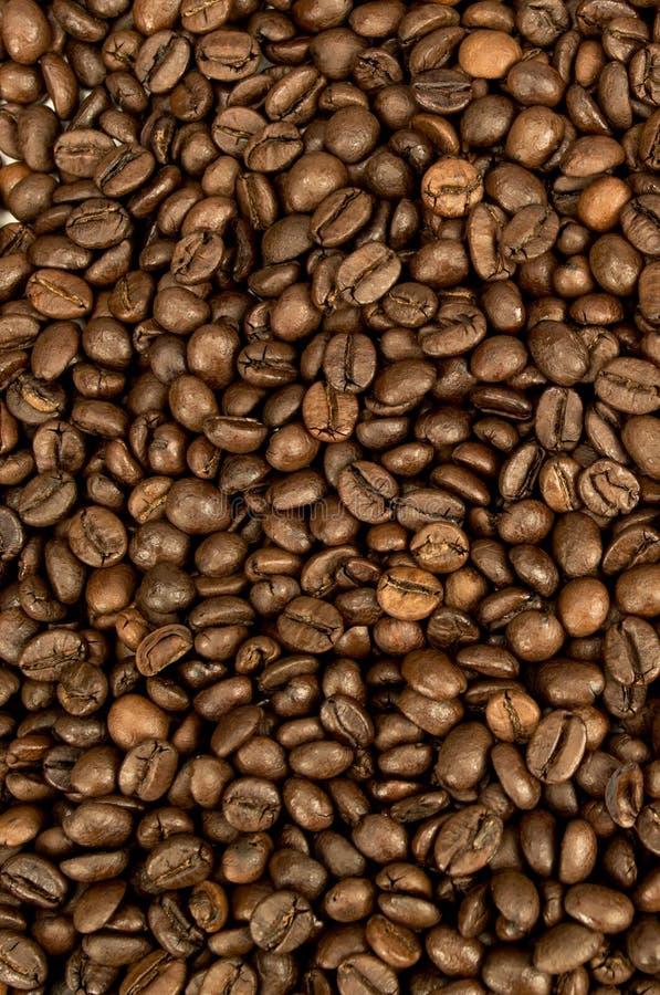 COFFEE-BACKGROUND 库存图片