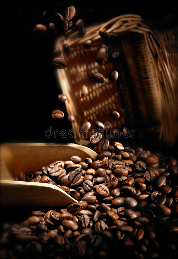 Download Coffee bean stock photo. Image of grind, black, backdrop - 11137454