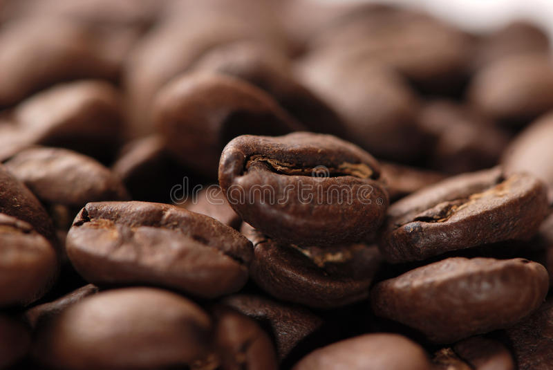 Coffee bean. Macro shot of coffee bean stock photo
