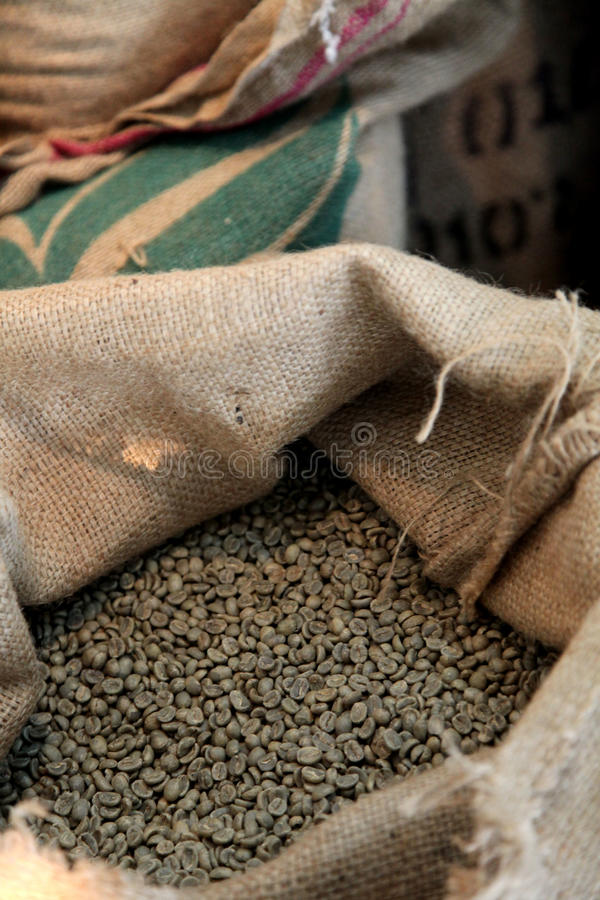 Download Coffee Bean Stock Photography - Image: 19571832