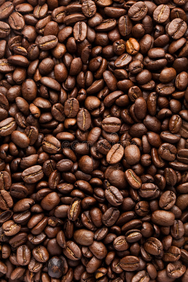 Download Coffee Bean Royalty Free Stock Photo - Image: 20261825