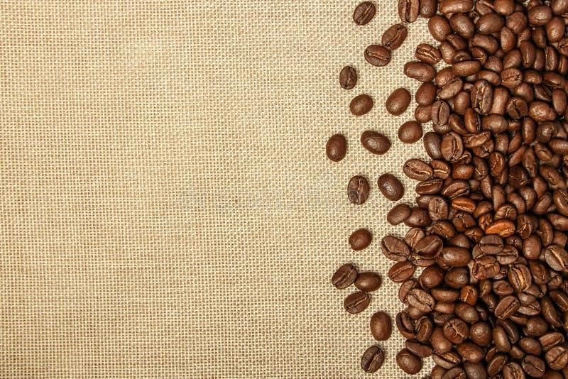 Coffee bean background royalty free stock photo